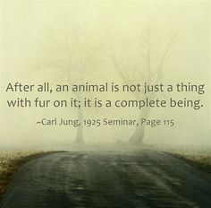 Carl Jung Depth Psychology: Some Carl Jung Quotations XV