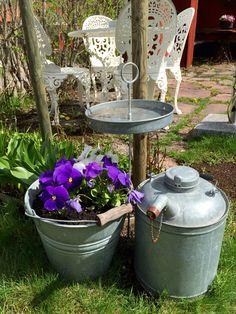My mothers garden 150514_1