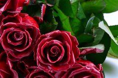 wachsrosen auch selber machen am besten wei e rosen nehmen wachs in einem topf auf der. Black Bedroom Furniture Sets. Home Design Ideas
