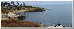Praias da Califórnia - La Jolla