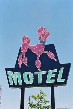 Poodle Motel