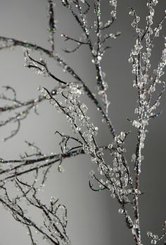 "How to make iced branches, or ""ice"" anything for winter. This is a must!"
