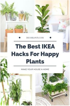 IKEA Hacks to keep your house plants pretty and happy. Great ideas for some quick DIY projects. #houseplants #DIY decor #ikeahack