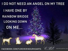 """""""I DO NOT NEED AN ANGEL ON MY TREE...I HAVE ONE BY RAINBOW BRIDGE LOOKING DOWN ON ME""""..."""