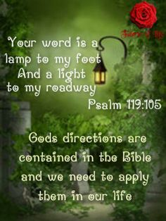"""""""Your word is a lamp to my foot, And a light to my roadway."""" - Psalm 119:105"""