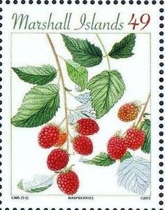 Stamp: Raspberry (Marshall Islands) (Sweet Berries) Mi:MH 3462