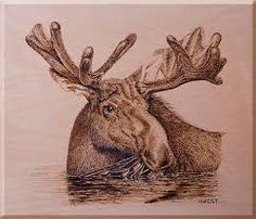 Image result for moose wood burning