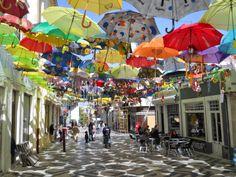 O Palhetas na Foz: 'Umbrellas' no Picadeiro