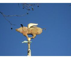 A flying pig oversees iconic Swanston Street | Art and place | Finding the right words