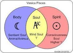 Image result for vesica piscis icon