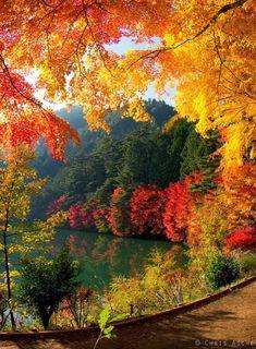Japan. Outono
