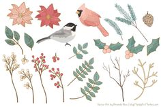Soft Christmas Leaves and Branches - Illustrations - 4