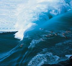 Teahupoo surf defined by expert forecaster Sean Collins. Learn what makes Teahupoo one of the best -- and most iconic -- surf spots in the world. Qi Gong, Kundalini Yoga, Pilates Reformer, Big Wave Surfing, Huge Waves, Wild Nature, Surfs Up, Tahiti, Ocean Waves