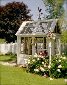 A small greenhouse made from old windows.