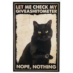 Cute Cats, Funny Cats, Funny Animals, Crazy Cat Lady, Crazy Cats, Cat Memes, Funny Memes, Black Cat Art, Black Cats