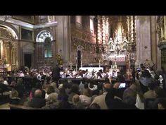 AMAC, Concerto de Santa Cecília, Orquestra de Iniciados e Juvenil