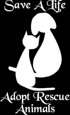 Adopt Rescue Animals Vinyl Car Laptop Wall Decal Sticker - FREE SHIPPING