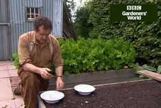 Growing your own garlic needn't be difficult – find out how to plant garlic in autumn in this quick video guide with Monty Don, on gardenersworld.com.