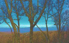 View from Eagle's Rest area of Mount Oglethorpe near Jasper GA.