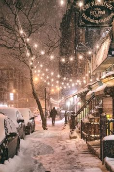 Winter Night - New York City - {by Vivienne Gucwa}