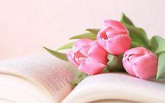 Картинки по запросу цветы в вазе обои высокого разрешения