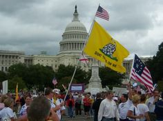 """Article: The Tea Party Patriots will organize a mass """"Audit the IRS Rally"""" on June 19th in Washington, D.C. Will you try to come to this massive rally?"""