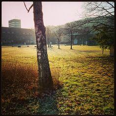 Nice Uni Saarland Morning