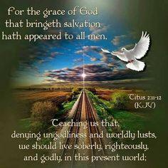 Scripture Cards, Bible Verses Quotes, Bible Scriptures, Titus 2 11, Sword Of The Spirit, King James Bible Verses, Lion Of Judah, Bible Truth, Daily Devotional