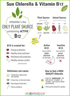 Vegan vitamin Vitamin foods, Vegan vitamins, Vegan nutrition, Vegan foods vegan - Chlorella The Superfood Your Entire Family Should Be Eating - Tomato Nutrition, Vegan Nutrition, Health And Nutrition, Nutrition Guide, Nutrition Chart, Nutrition Month, Gut Health, Vitamin A, Vitamin B 12 Foods