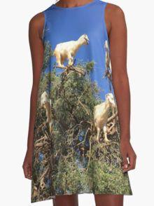 Goats in an argan tree Robe trapèze