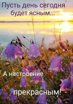 Beautiful Day, Good Morning, Plants, Outdoor, Live, Bom Dia, Outdoors, Buen Dia, Bonjour