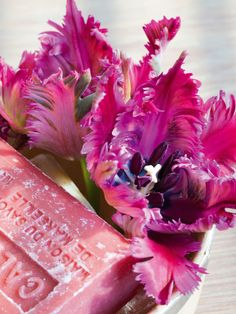 What We Love Right Now: The Parrot Tulip --> http://www.hgtvgardens.com/tulips/parrot-tulips?s=5