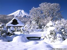 Oshinohakkai Winter In Japan, Four Seasons, Fuji, Kyoto, Mount Everest, Snow, Japanese, Mountains, Nature