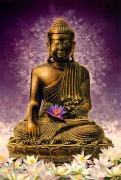 BUDDHA WORDS: Until he has unconditional and unbiased love for all beings, man will not find peace.