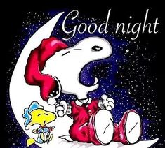 Good Night Greetings, Good Night Messages, Good Night Wishes, Cute Good Night, Good Night Gif, Good Night Image, Snoopy Love, Charlie Brown And Snoopy, Snoopy And Woodstock