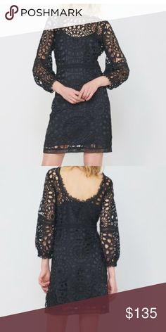 NWT Alice & Trixie Brighton Dress size M This elegant dress in Capri lace has a dramatic sleeve, pearl button accent and removable slip. Pair with classic back heels for a sophisticated look. Alice & Trixie Dresses Long Sleeve