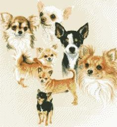 Cross Stitch Kit Chihuahua Dog £32.95
