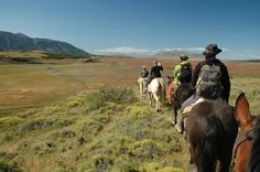 Horse trekking in the pampas, Argentina