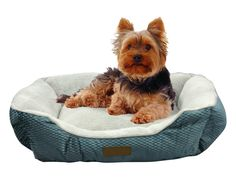 500 Beds For Cats Ideas Cat Bed Dog Bed Pet Bed