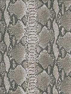 29 Best Snakeskin Images Snake Skin Animal Print