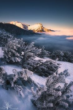 Tatra Mountains, Poland, by Piotr Jamiński