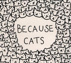 Because cats Art Print
