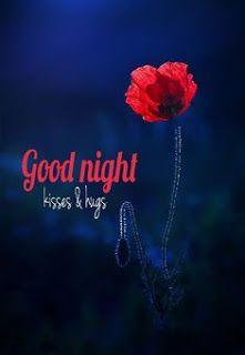 Romantic Good Night Image, Good Night Love Messages, Good Night Love Quotes, Beautiful Good Night Images, Good Night Wishes, Good Night Babe, Lovely Good Night, Good Night Flowers, Good Night Friends