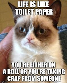 Life lessons with Grumpy Cat.
