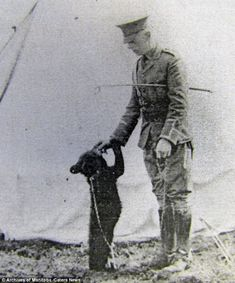 """Lieut. Harry Colebourn playing the black bear cub """"Winnie"""", who was bought in White River (Ontario) while on his way to the training camps in Valcartier (Quebec) in 1914. Colebourn was a veterinarian - an essential position in a war in which horses were still a primary mode of transportation. Salisbury Plains, England, 1914"""