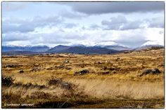 conamara. ♥ Connemara, Ireland, Places To Visit, Coast, Mountains, Nature, Pictures, Travel, Photos