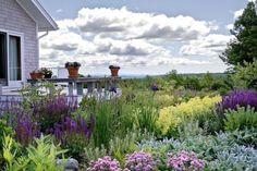 My kind of butterfly garden!  houzz.com garden ideas