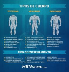 Tipos de cuerpos: Ectoformo, mesoformo y endoformo. #fitness #motivation…