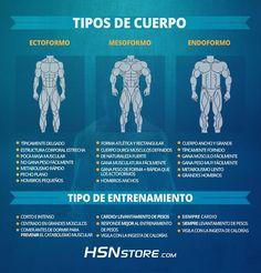 Tipos de cuerpos: Ectoformo, mesoformo y endoformo. #fitness #motivation…