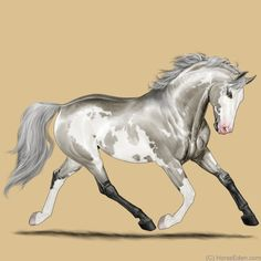 Horse Eden Eventing is an exciting online horse game. Come check us out! Cute Horses, Pretty Horses, Beautiful Horses, Painted Horses, Star Stable Horses, Arte Equina, Horse Animation, Horse Markings, Horse Games